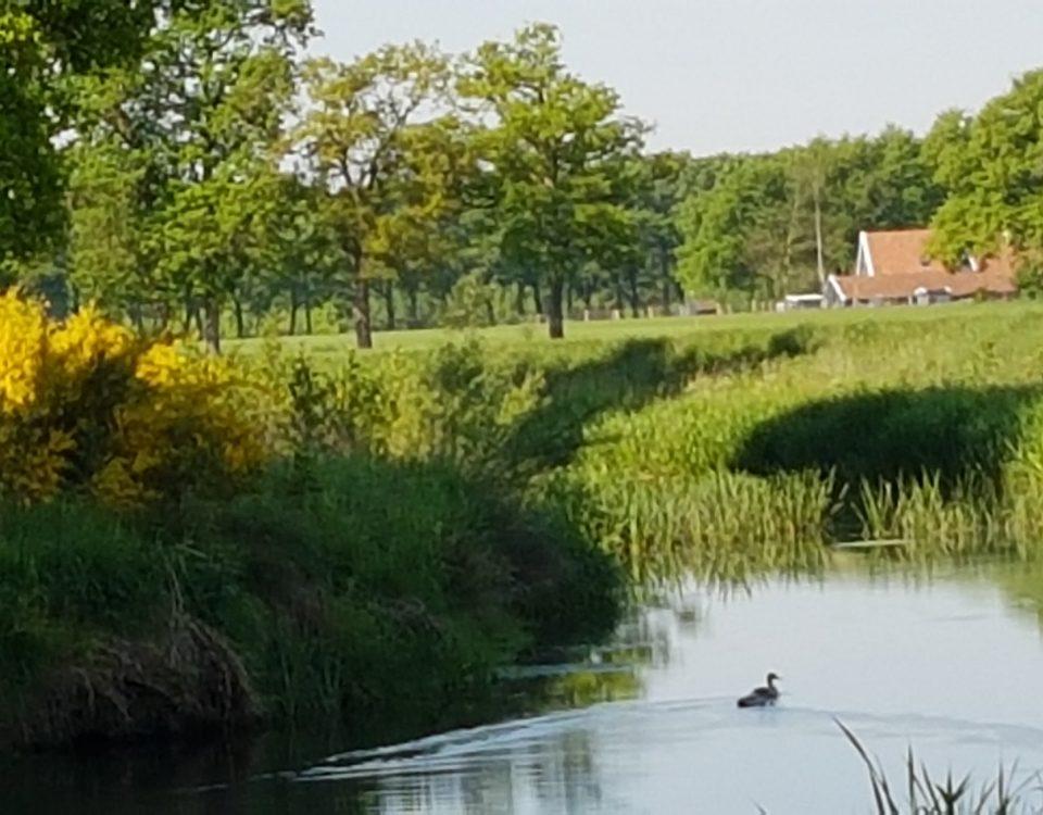Wandelen, Buurserbeek, familieweekend, Groepshuis Twente